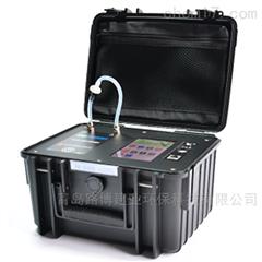 LB-FD500闪烁瓶法空气测氡仪