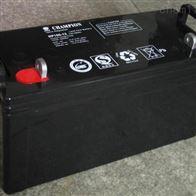 12V100AH冠军蓄电池NP100-12批发零售