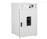 DHG-BP智能程序控温干燥箱