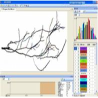 SGX-A根系分析仪