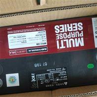 12V65AH大力神蓄电池MPS12-65N销售