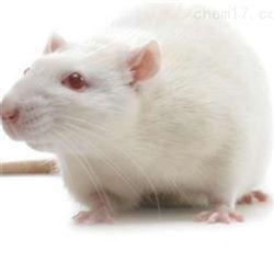 阿尔茨海默病(AD)动物模型实验