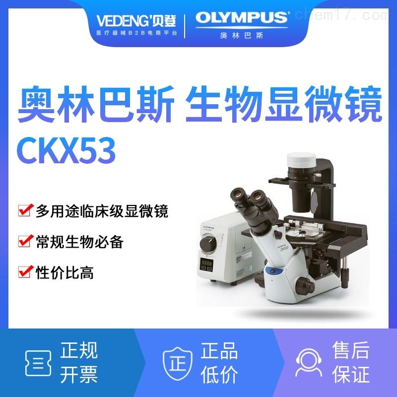 OLYMPUS奥林巴斯倒置生物显微镜CKX53