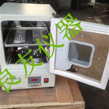 电热培养箱/电热恒温