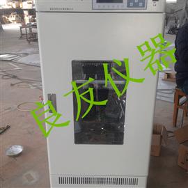 HWHS-250250L恒温恒湿培养箱