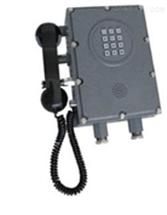 DL17-AKD-1A擴音呼叫防爆自動電話機 防腐耐用防爆自動電話機 防爆電話機