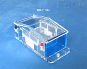 琼脂糖电泳仪 微型电泳槽 PCR电泳分析仪 RNA电泳仪