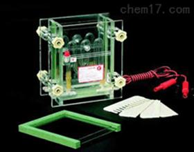 单板夹芯式垂直电泳仪 蛋白凝胶电泳槽 夹芯式垂直电泳仪