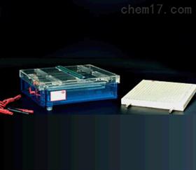 电聚焦多用途电泳仪 电聚焦电泳槽 水平调节腿电泳仪