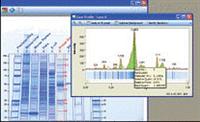ImageLab全自動凝膠分析軟件