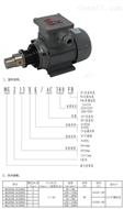 JS08-AC380FB磁力齿轮泵  医疗机械齿轮泵 精细化工齿轮泵 齿轮泵