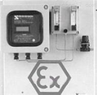 QT02-SSR2-EC91在线式本安型氢中氧分析仪 本安型氢中氧监测仪 氢中氧检测仪