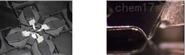 多探针扫描探针显微镜(Multi-probe SPM)