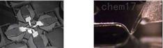 多探針掃描探針顯微鏡(Multi-probe SPM)