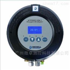 XTP601 系列氧气分析仪