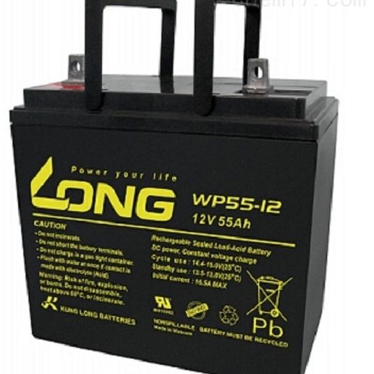 LONG广隆蓄电池WP55-12代理选购