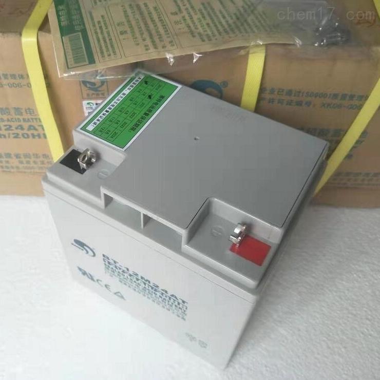 赛特蓄电池BT-12M24AT全新报价