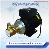 250W单相进口黄铜汽油柴油泵