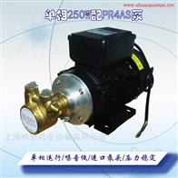 PR250W单相进口黄铜汽油柴油泵