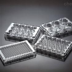 一次性细胞培养板 JET洁特