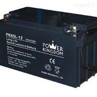 12V65AH三力蓄电池PK65L-12区域代理