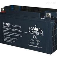 12V120AH三力蓄电池PK120L-12全国联保