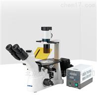 舜宇 XD 倒置荧光显微镜