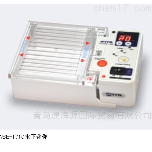 WSE-1710紧凑型琼脂糖凝胶电泳仪日本进口