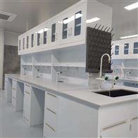 PPGZ-6广州PP实验台-耐酸碱通风柜