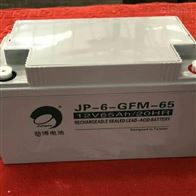 12V65AH劲博蓄电池JP-6-GFM-65报价