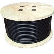 SATB-7KTL-HB FBJR-60电伴热带伴热电缆
