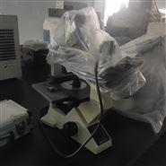 回收二手尼康成像显微镜