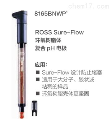 Sure-Flow PH电极