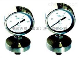 YPF型号防腐膜片式压力表