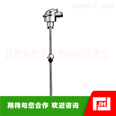 JUMO久茂901020温度传感器