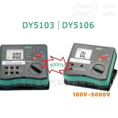DY5106数字式绝缘电阻多功能测试仪