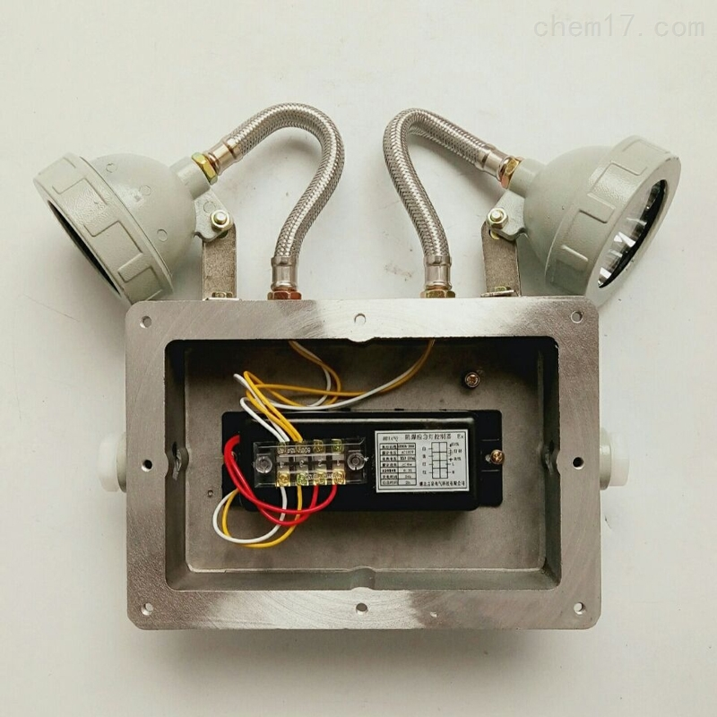 防爆应急灯电源电池bcj-2*3W壁装式