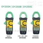 DY250B雙顯數字鉗表