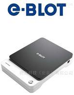 E-BLOT XLiWestern Blot化学发光成像仪e-Blot
