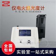 FP6400A精科仪电火焰光度计