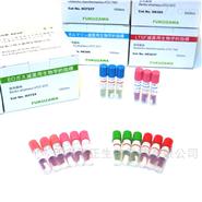 臭氧灭菌生物指示剂