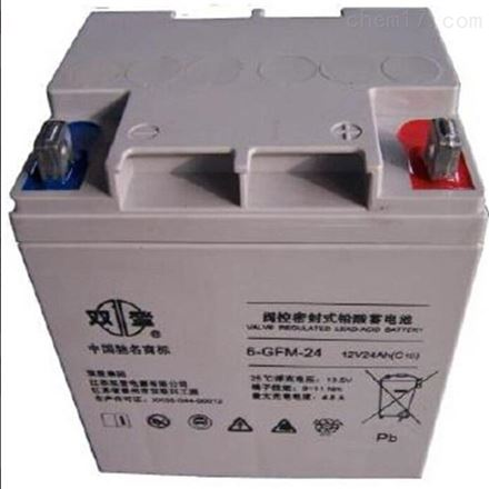 双登免维护 12V24AH铅酸蓄电池