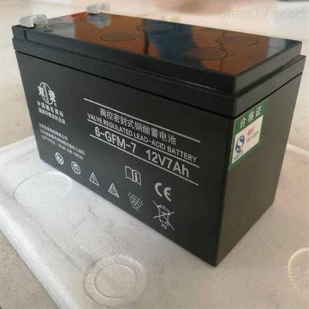 双登铅酸免维护蓄电池12V33AH