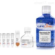lifeline 腎臟上皮細胞培養基套裝 現貨促銷