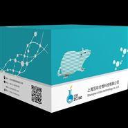 血液碱性磷酸酶(AKP/ALP)检测试剂盒
