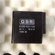 德国GSR电磁阀A632308047505XX 0-40Bar现货