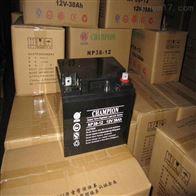 12V38AH冠军蓄电池NP38-12区域价格