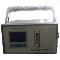 便携式氧分析仪