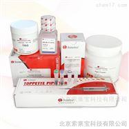 BC3720植物蛋白提取试剂盒