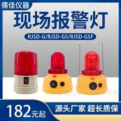 RJSD系列射线现场警报器 现场报警仪